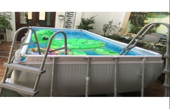 Bể bơi lắp ghép KT: 2.01m x 4.04m cao 1m
