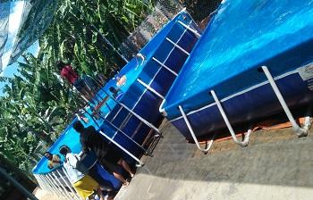 Bể bơi di động Sơn La giá rẻ